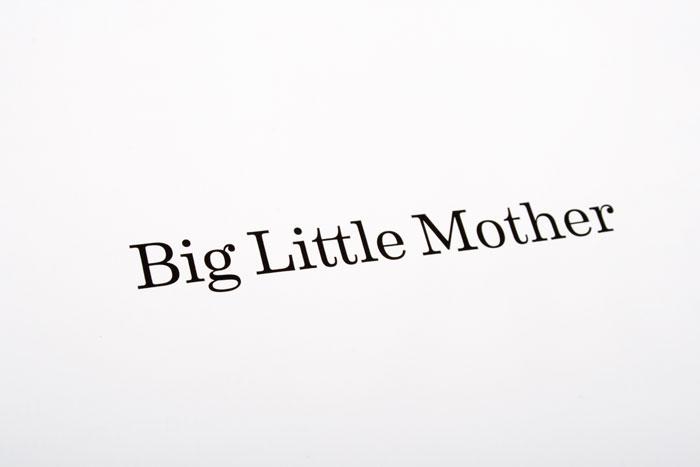 Big Little Mother SLIDE_04